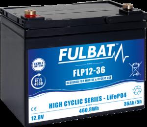 FT_FLP12-36_HighCyclic_LiFePO4-(1)